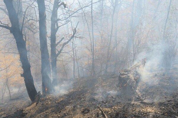 مهار آتش سوزی در جنگل خسرج