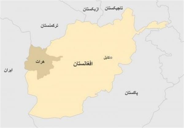آیا تسلیم شدگان در هرات اعضای طالبان هستند؟
